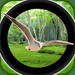 森林鸟狩猎游戏最新版v1.0 安卓版