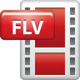 flv格式�D�Q器