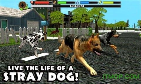 野狗生存模拟器3D v2.68.9 安卓版 0