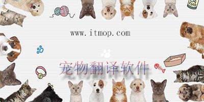 宠物翻译软件