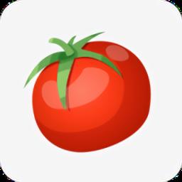 西红柿小说最新版v1.1 安卓版