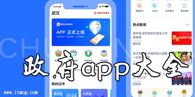 政府app