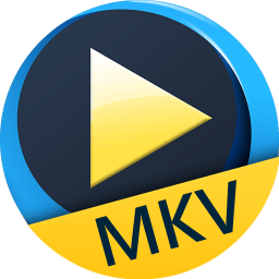 MKV播放器Aiseesoft Free MKV Player