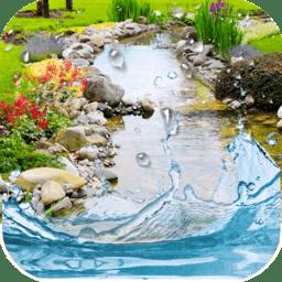 Water Garden Premium(锦鲤动态壁纸)