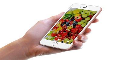 水果批发app