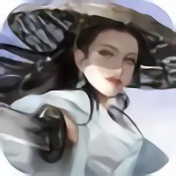 侠影风云录v2.0.6 安卓版