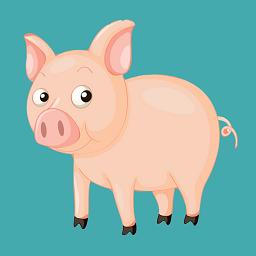 小猪电视tv版