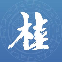 壮掌桂广西政务服务网上一体化平台v2.1.0 安卓版