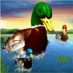 真正的鸭子3D官方版