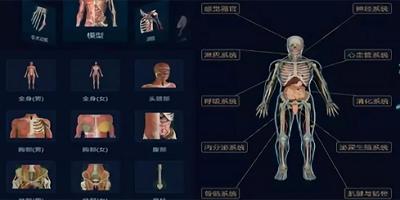 骨骼肌肉app