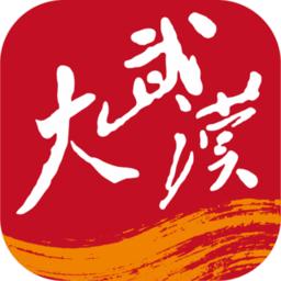大武汉app
