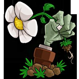 植物大战僵尸一代年度汉化稳定版