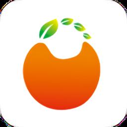 橙子网购省钱助手