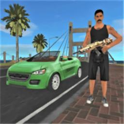 迈阿密猎车手游戏
