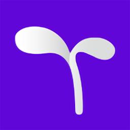 豆芽账app