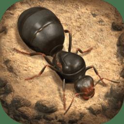 小小蚁国汉化版