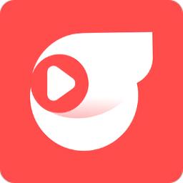 55体育直播app
