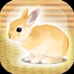 治愈的兔子官方版