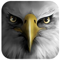 老鹰模拟飞行中文版