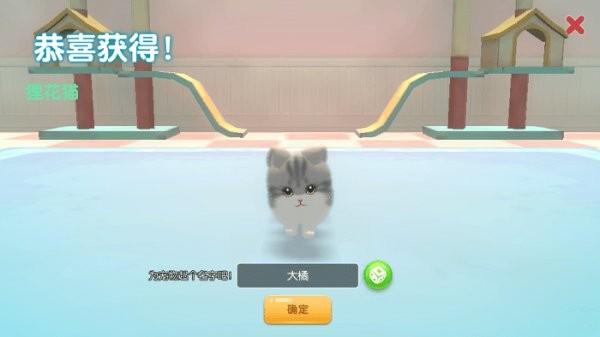养了个猫游戏 v1.0 安卓版 2