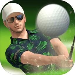 高尔夫之王世界巡回赛游戏