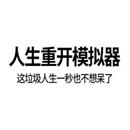 人生重�_模�M器
