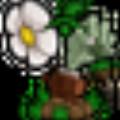 植物大战僵尸一排植物修改器